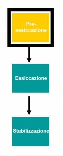 Le 3 fasi tecnologiche dell'essiccazione