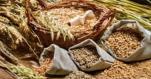 Grani antichi per produrre pasta fresca